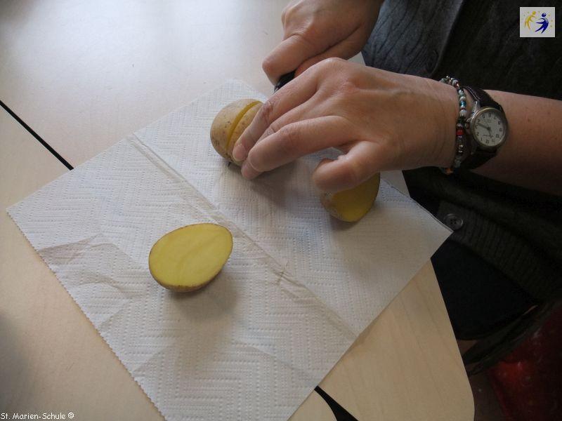 14-11-potato-stamping-02